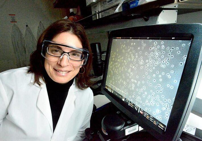 Cientista Daniela Kaufer