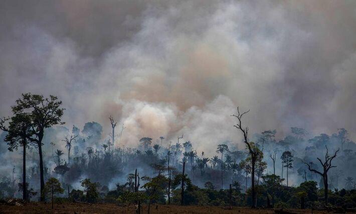 Amazônia queima em Altamira, no Pará