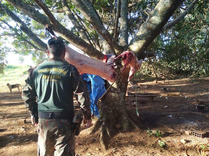 Policiais estavam em acampamento quando caçadores chegaram e foram presos