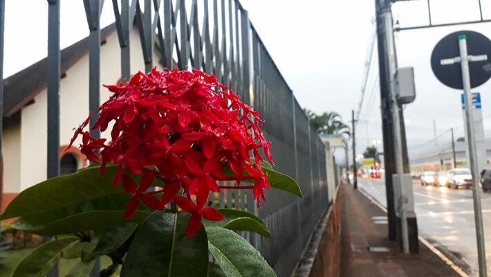 Chuva leve começou na tarde de ontem, 4ªfeira (6.maio) em Campo Grande