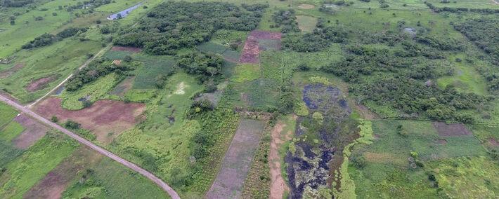 A construção, redescoberta por uma equipe internacional de arqueólogos graças a sobrevoos e escavações na área, provavelmente é o mais antigo monumento da civilização maia