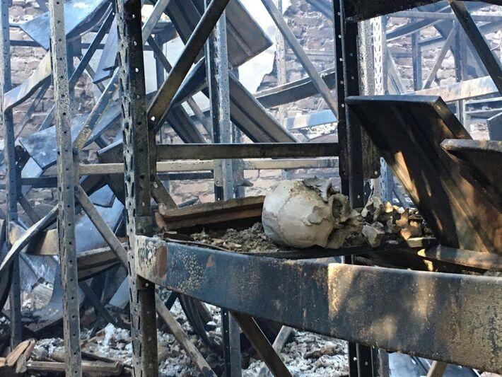 Incêndio em Museu de História natural da UFMG