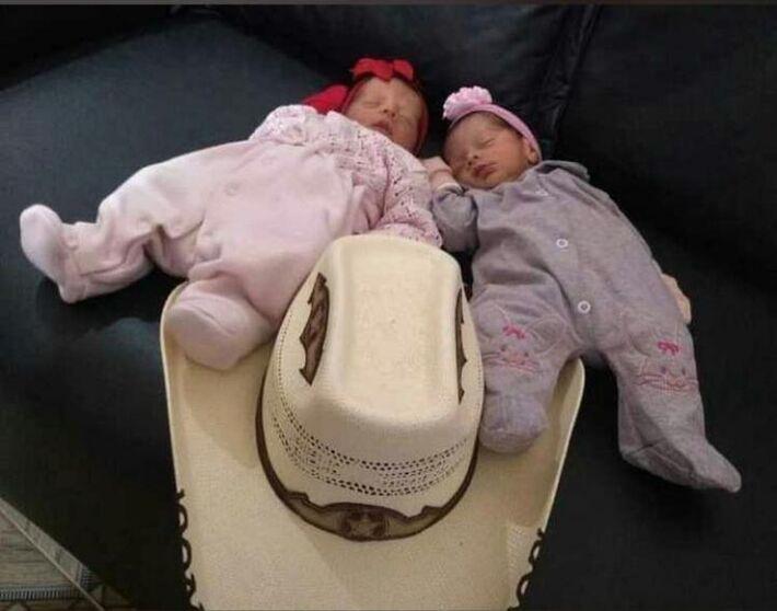 Recém-nascidas gêmeas morrem após serem atacadas por cachorro da família no sudoeste da Bahia