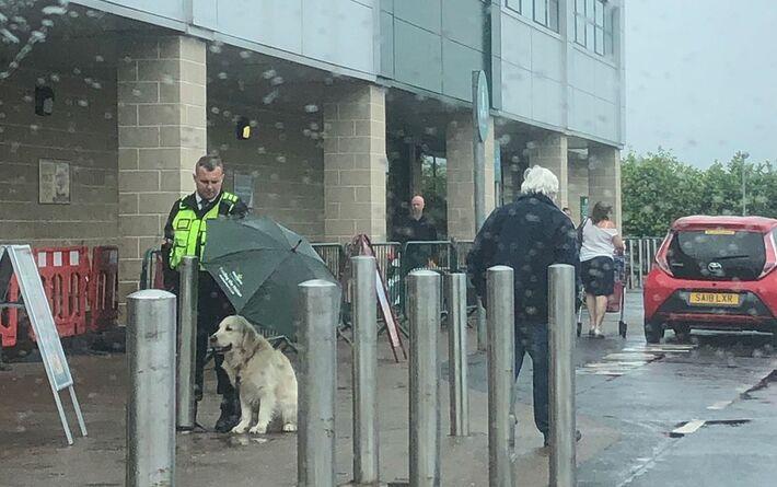 Ethan Dearman usa guarda-chuva para proteger o cão Freddie da chuva em Giffnock, na Escócia