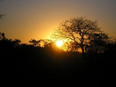 Nascer do Sol às 6h12 deste dia 8 de agosto em Campo Grande - MS