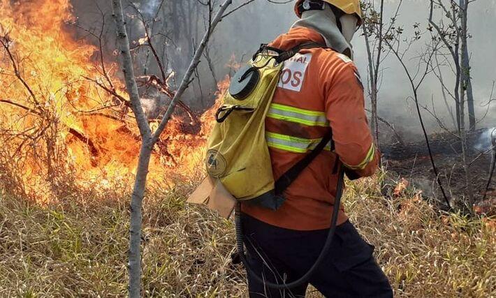 Homens do Corpo de Bombeiros trabalham para apagar o incêndio em área de proteção do Pálacio do Jaburu