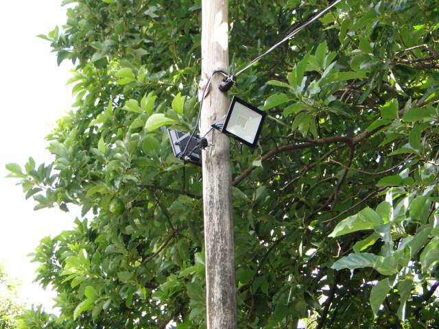 Luzes trocadas no exterior da ONG