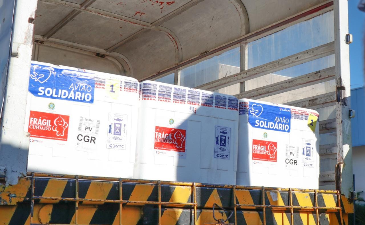 Imunizantes que chegaram na manhã de hoje irão para os 79 municípios de Mato Grosso do Sul