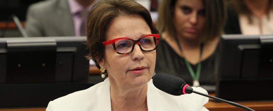Candidata a reeleição que apóia uso de agrotóxicos tem aumento